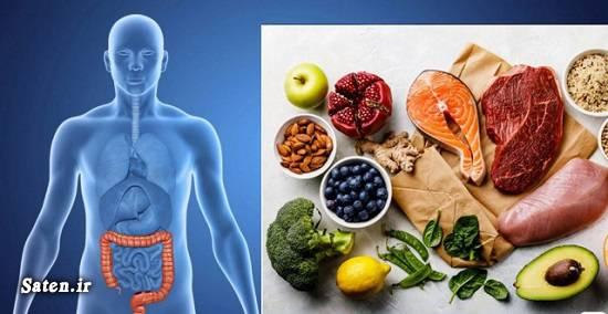 خوردنی های مفید برای پیشگیری از سرطان روده بزرگ