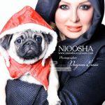 بازیگران ایرانی سگبازی را به عنوان یک پز اجتماعی انتخاب کردهاند! / از جشن تولد سگ خانم بازیگر تا سنگ قبری برای «پگی خانوم» + عکس