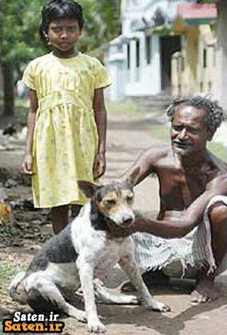 رابطه جنسی با سگ دختر و سگ ازدواج هندی ازدواج با سگ ازدواج با حیوانات