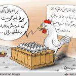 بر احوال آن مرغ باید گریست ، که خرجش دلار است و دخلش ریال + عکس