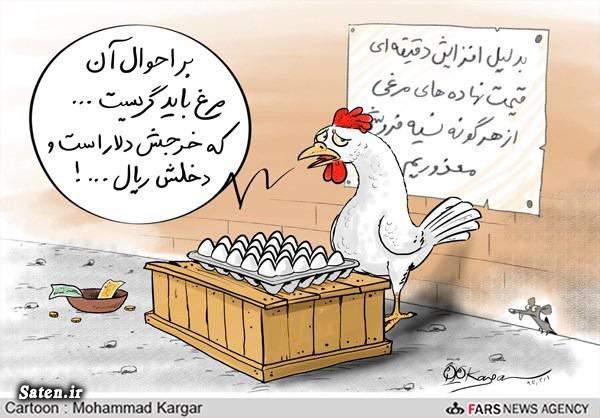 مرغ تخم گذار کاریکاتور مرغ کاریکاتور تخم مرغ قیمت نهاده های دامی قیمت مرغ تخم گذار قیمت تخم مرغ طنز تخم مرغ