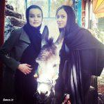عکس یادگاری دو بازیگر زن معروف با یک الاغ