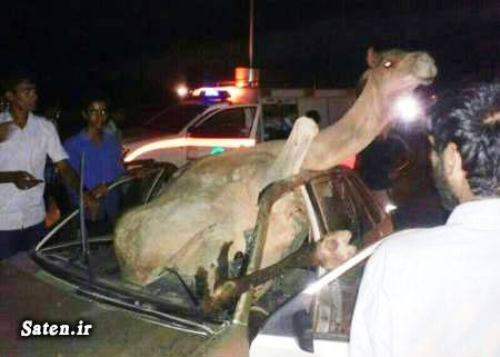 عکس تصادف تصادف وحشتناک در ایران تصادف ماشین تصادف خودرو