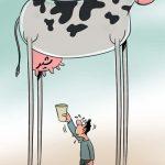 افزایش 30 درصدی قیمت شیر! / کاریکاتور