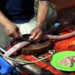مار کبری هنگام پخته شدن آشپز را کشت + عکس