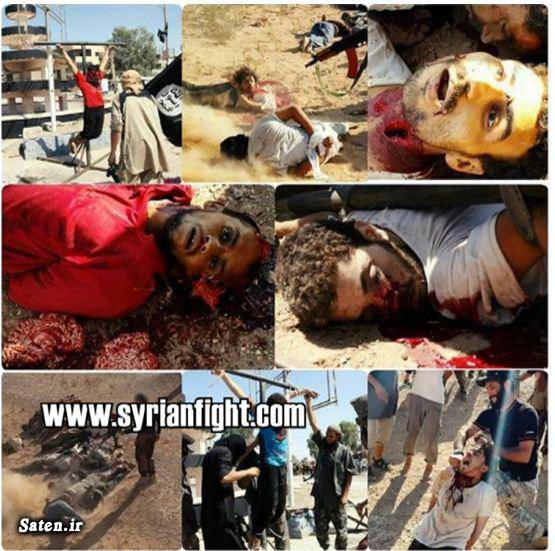 فیلم داعش عکس قتل عکس داعش عکس اعدام جنایات داعش
