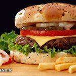 همبرگر انسان را خنگ می کند!