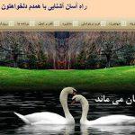 معرفی طرح همسر گزینی سایت تبیان