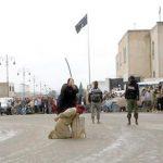 جنایت جدید داعش – گردن زدن  در رقه + (عکس ۱۸)