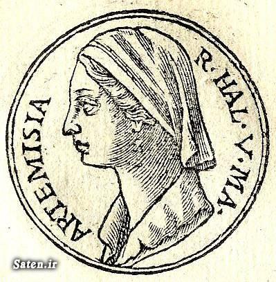 عکس قدیمی زن ایرانی دختر ایرانی ایران قدیم اخبار جالب آرتمیس Artemis