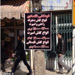 خودکشی عجیب یک ایرانی! + عکس