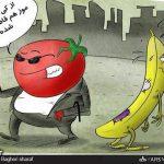 در حاشیه افزایش بی سابقه قیمت گوجه فرنگی / کاریکاتور