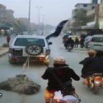 جنایت وحشیانه داعش در شهر رقه + عکس