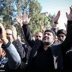 اظهارات مداح مشهور درباره مرتضی پاشایی