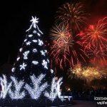 با شکوه ترین درخت های کریسمس ۲۰۱۴ + عکس