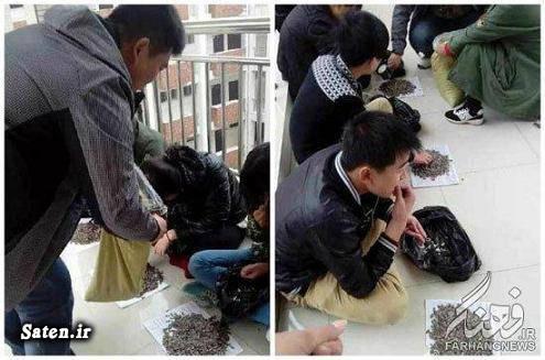 معلم چینی مدرسه چینی تنبیه دانش آموزان