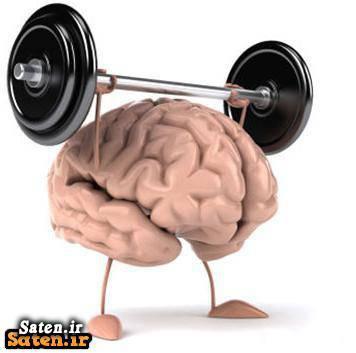 روشهای تقویت حافظه افزایش هوش افزایش حافظه