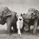 گرانقیمت ترین عکس های فروخته شده در جهان + عکس
