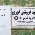 فروش کبد سالم ؛ چند قیمته داداش ؟! + عکس
