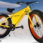 دوچرخهای با قیمت ناقابل ۱۱ میلیارد تومان! + عکس