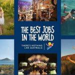 لذت بخش ترین مشاغل دنیا + عکس