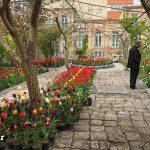 یک خانه رؤیایی در تبریز + تصاویر