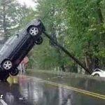 سوانح رانندگی عجیب و غریب و باورنکردنی + عکس