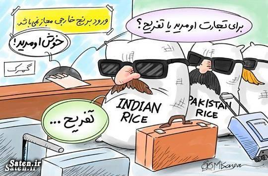 واردات برنج کاریکاتور گمرک آمار گمرک