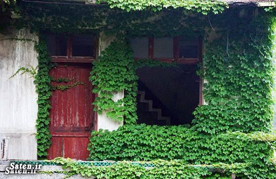مناطق گردشگری عکس زیبا عکس روستا روستای زیبا توریستی چین