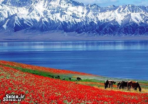 عکس طبیعت عکس زیبا