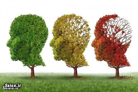 مجله سلامت مجله پزشکی درمان آلزایمر پیشگیری آلزایمر بیماری آلزایمر