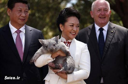 همسر شی جی پینگ همسر رئیس جمهور رئیس جمهور چین بیوگرافی شی جی پینگ Xi Jinping