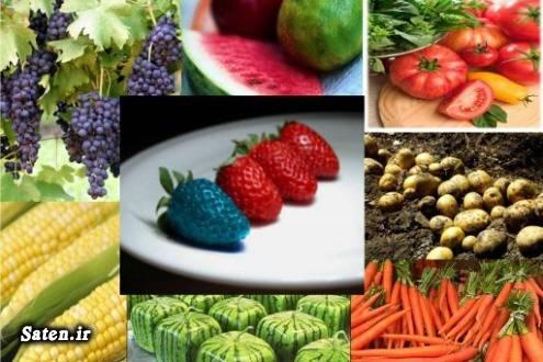 محصولات تراریخته غذای سالم سوابق جواد ظریف Transgenic