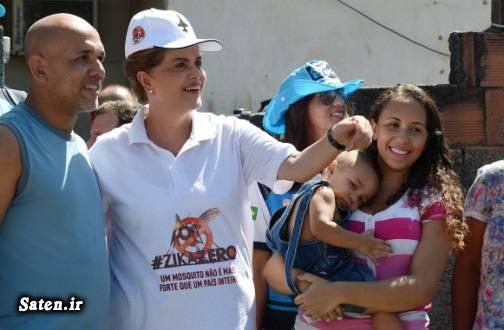 ویروس زیکا همسر دیلما روسف بیوگرافی دیلما روسف ZikaZero Dilma Rousseff