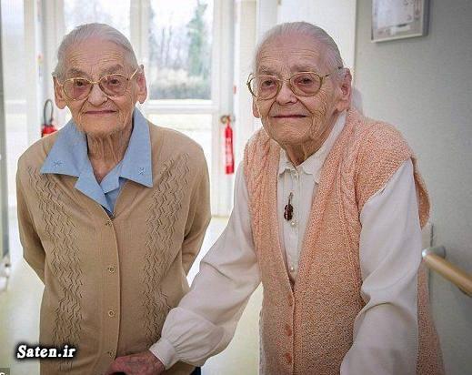 عکس دوقلو راز طول عمر راز افزایش عمر تولد دوقلو پیرترین انسان