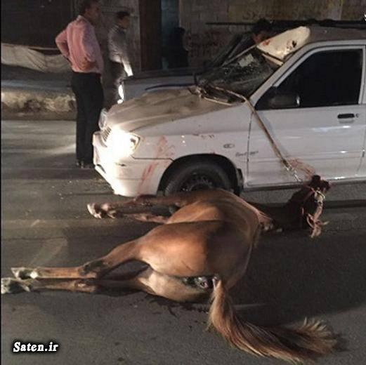عکس تصادف حوادث واقعی حوادث بوشهر تصادف پراید اخبار بوشهر