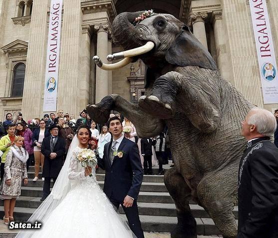 ماشین عروس ایرانی عکس عروسی عروسی جالب بهترین ماشین عروس