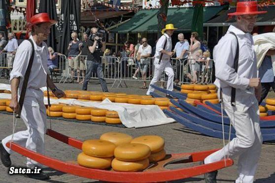 گرانترین پنیر دنیا قیمت پنیر زندگی در هلند