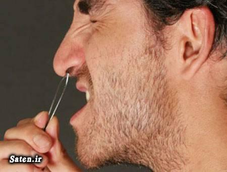 مو دماغ مو بینی مجله سلامت متخصص گوش حلق بینی