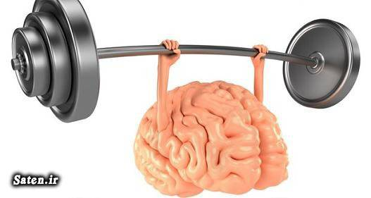 روشهای تقویت حافظه حافظه برتر افزایش هوش افزایش حافظه