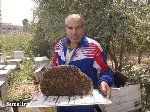 راتب سمور درمان فلج مغزی درمان سرطان درمان ریزش مو درمان با نیش زنبور عسل حشره شناسی چسب زنبور پرورش زنبور عسل