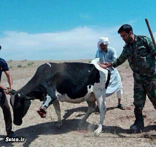 حوادث واقعی حوادث خوزستان اخبار خوزستان