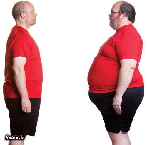 لاغری شکم عوامل چاقی صاف شدن شکم درمان چاقی جلوگیری از چاقی بهترین رژیم لاغری