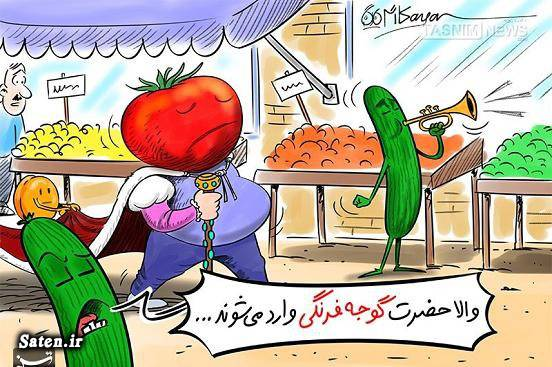 کاریکاتور گوجه فرنگی کاریکاتور قیمت کالا قیمت گوجه فرنگی