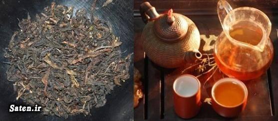 گرانترین چای قیمت چای خارجی قیمت چای چینی دا هونگ پائو اخبار چای Da Hong Pao