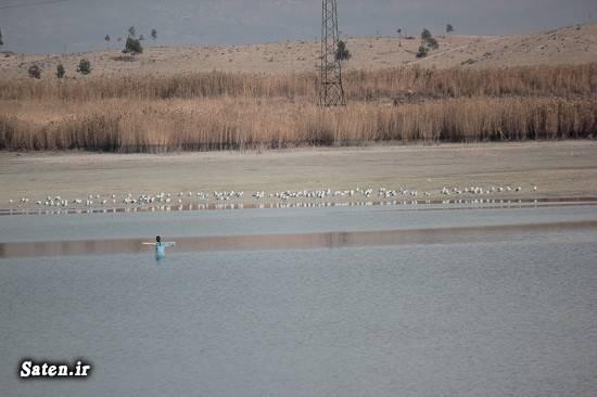 توریستی شهر ری توریستی تهران تالاب عشق آباد اخبار شهر ری Eshghabad wetland