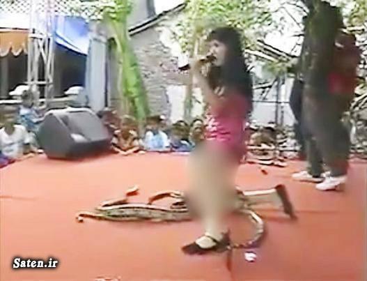 مار کبری مار بازی زن اندونزیایی رقص زیبا خواننده زن Irma Bule