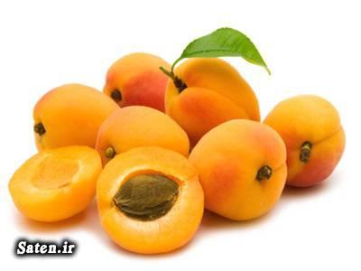 مضرات زرد آلو زیبایی صورت روغن زرد آلو خواص زرد آلو خواص برگ زرد آلو Prunus armeniaca
