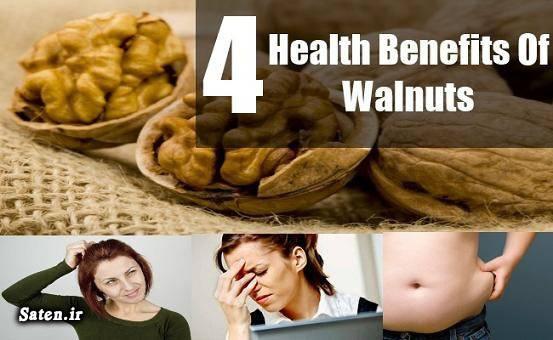 مجله سلامت گردو شکن کاهش وزن سلامت قلب درمان یبوست خواص گردو تقویت حافظه پوست گردو امگا 3 امگا 1 Walnuts