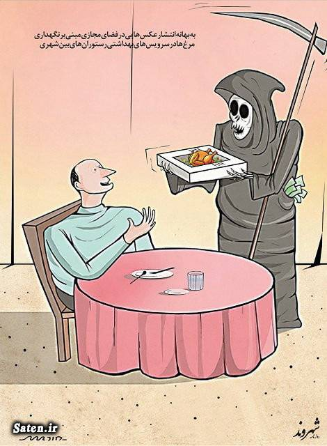 کاریکاتور وزارت بهداشت کاریکاتور مرغ کاریکاتور سلامت کاریکاتور رستوران